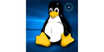 Linux ANNUNCIO.jpg