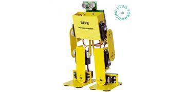 Meccanico robot ANNUNCIO.jpg